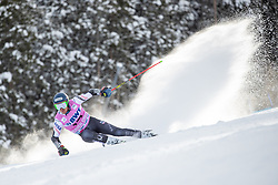 02.12.2018, Beaver Creek, USA, FIS Weltcup Ski Alpin, Beaver Creek, Riesenslalom, Herren, 1. Lauf, im Bild Ted Ligety (USA) // Ted Ligety of the USA in action during his 1st run of men's Giant Slalom of FIS ski alpine world cup in Beaver Creek, United States on 2018/12/02.12.2018. EXPA Pictures © 2018, PhotoCredit: EXPA/ Johann Groder