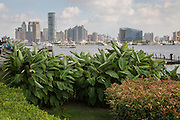View of the Shanghai skyline from the riverside promenade Pudong area of Shanghai, China
