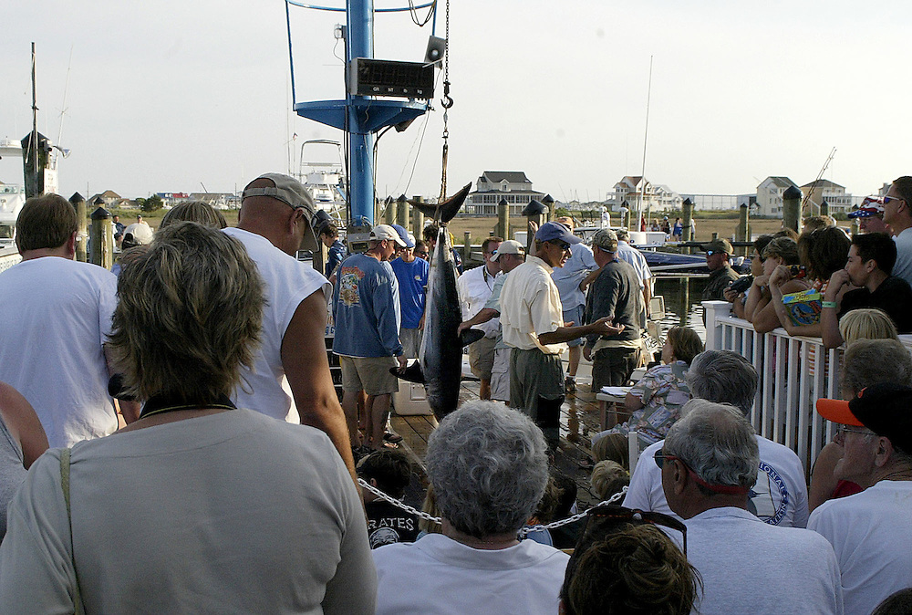 A crowd gathers for the weighing of a mako shark at the 2006 Ocean City Tournament.