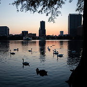 Lake Eola Park is silent due to a stay at home order that was issued by Orange County government on Friday, March 27, 2020 in Orlando, Florida.  (Alex Menendez via AP)