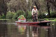 Un hombre transporta una caja de rábanos en los canales de Xochimilco. Octubre 21 de 2015 (Foto: Prometeo Lucero)