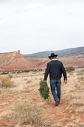 cowboy walking off with a Christmas Wreath on a mountain range