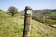 Sign for Mid Wilts Way walk on fence post on chalk scarp slope at Oare, Vale of Pewsey, Wiltshire, England, UK