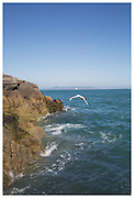 Sandycove Coast. 500 Hidden Secrets of Dublin, published by Luster Books