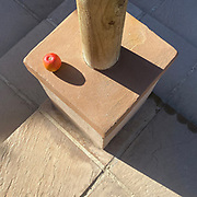 Lockdown Day 4 <br />