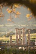 Roman ruins of Baelo Claudia in Bolonia, Andalusia, Spain