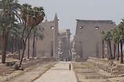 A women tourist walks along the Avenue of the Sphinxes towards the ancient Egyptian Colossi at the entrance to Court of Ramses II, Luxor Temple, Luxor, Nile Valley, Egypt.