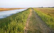 Coastal path going into the distance, Alderton, Suffolk, England