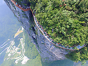 ZHANGJIAJIE, CHINA - AUGUST 01:<br /> <br /> Glass Skywalk Overlooking Road Of 99 Turns 0pens In Zhangjiajie<br /> <br />  Tourists walk on the 100-meter-long and 1.6-meter-wide glass skywalk clung the cliff of Tianmen Mountain (or Tianmenshan Mountain) in Zhangjiajie National Forest Park on August 1, 2016 in Zhangjiajie, Hunan Province of China. The Coiling Dragon Cliff skywalk, featuring a total of 99 road turns, layers after another, is the third glass skywalk on the Tianmen Mountain (or Tianmenshan Mountain).<br /> ©Exclusivepix Media