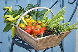 Trug filled with garden produce including tomoatoes and chillies