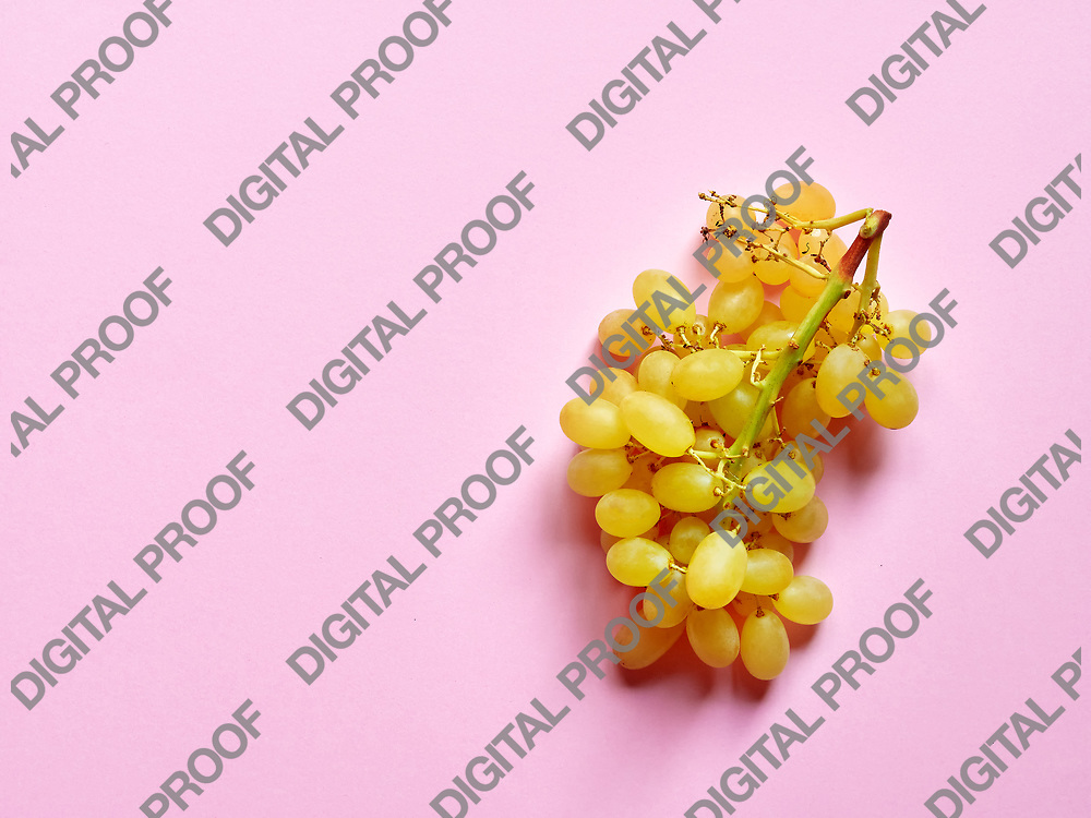 Above view of isolated set of a bunch of sweet seedless grapes in studio with millennial pink background