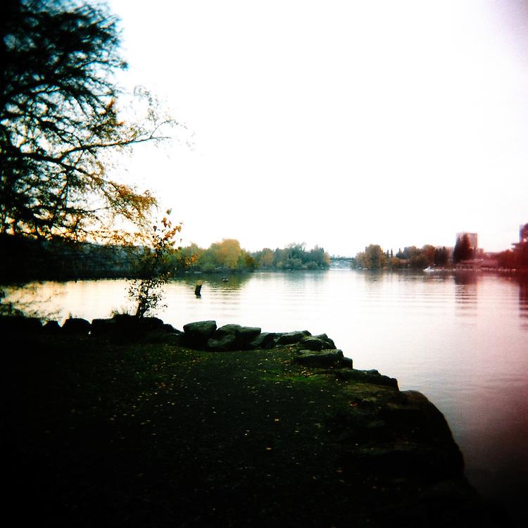 Lake Washington Arboretum Waterfront Trail No.1