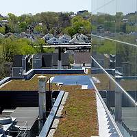 USA, Massachusetts, Boston. The Green Roof at WGBH Studios.