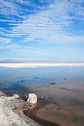 Chaxa Lagoon salt lake, Salar De Atacama, Chile, South America