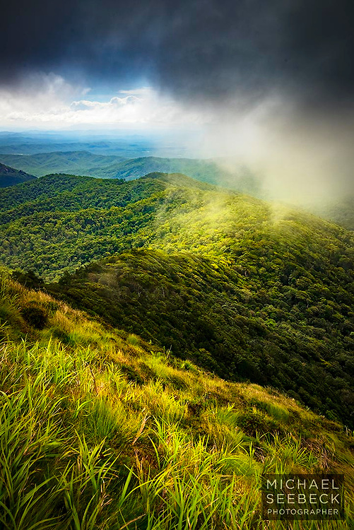 A stunning view over wet tropics rainforest as low cloud rolls over the high hills and mountains of the wet tropics.<br /> <br /> Code: PAQT0121<br /> <br /> Available as limited edition print and as a stock image.<br /> <br /> Edition size of 25<br /> <br /> Add to Cart to view options and pricing.