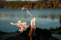 Canada anniversary weekend - Ayers Cliff - Ripplecove.  ©2018 Karen Bobotas Photographer