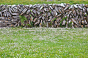Traditional dry stone wall and meadow in The Burren, County Clare, West of Ireland