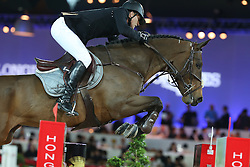 Houtzagers Marc (NED) - Sterrehof's Tamino <br /> CSI 5* Longines Hong Kong Masters 2013<br /> Longines Grand Prix<br /> © Hippo Foto - Counet Julien