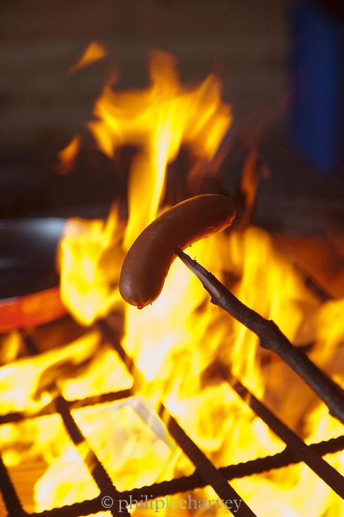 A reindeer sausage cooking over a campfire, Lemmenjoki National Park, Finland