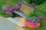 Bench flanked by flower pots<br /> Port Carling<br /> Ontario<br /> Canada