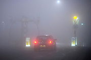 © Licensed to London News Pictures. 13/03/2014. Richmond, UK . A car drives carefully through a crossing. Deer graze and feed in the heavy fog at Richmond Park, Surrey, today 13th March 2014. Photo credit : Stephen Simpson/LNP