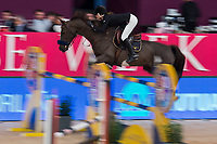 Rider Leticia Riva Gil and her horse Roanne de Mars during Madrid Horse Week at Ifema in Madrid, Spain. November 26, 2017. (ALTERPHOTOS/Borja B.Hojas)