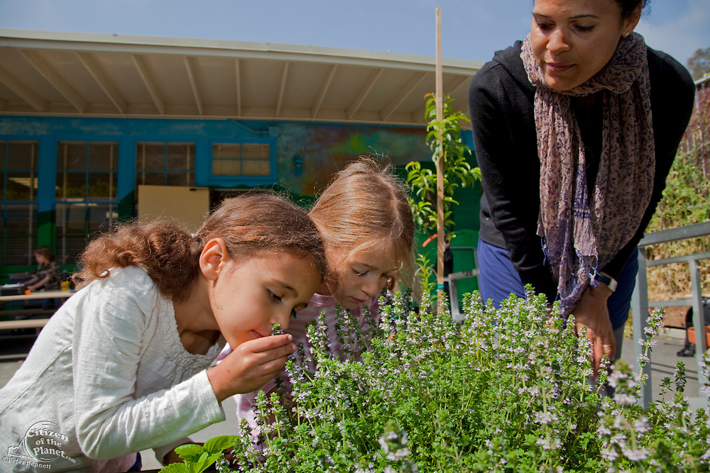 Young girls and their mother learn about the garden at their elementary school. Wonderland Elementary School, Laurel Canyon, Los Angeles, California, USA