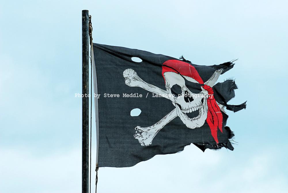 Jolly Roger Flag - 2010