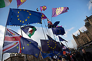 Anti Brexit pro Europe demonstration in Westminster on 27th March 2019 in London, England, United Kingdom. With the date of the UK leaving the European Union extended, the pro EU protest continues as MPs from all sides try to gain control of the process, as they debate the various options in the commons.