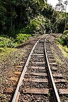 Estrada de ferro no distrito de Rio Natal. São Bento do Sul, Santa Catarina, Brasil. / <br /> Railway at Rio Natal district. São Bento do Sul, Santa Catarina, Brazil.