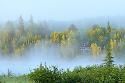 Cottage in morning fog on Longbow Lake<br /> Kenora<br /> Ontario<br /> Canada