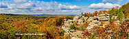 63895-15918 Camel Rock in fall color Garden of the Gods Recreation Area Shawnee National Forest IL