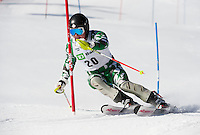 TD Bank Eastern Cup Slalom at Waterville 1st run  March 27, 2011.