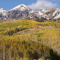 Stock | Colorado
