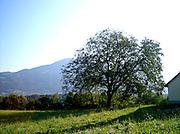 Austria landscapes county Vorarlberg