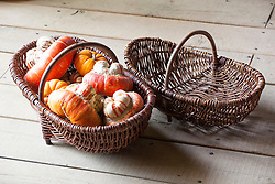 Baskets with squash