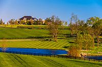 Winstar Farm, Versailles (Lexington), Kentucky USA.
