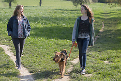 Teenage girls walking with their dog, Freiburg im Breisgau, Baden-Wuerttemberg, Germany