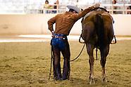 Chris Cox Horsemanship Clinic