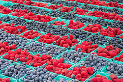 United States, Washington, Bellevue, red raspberries and blueberries for sale at farmer's market