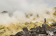 Mina de Azufre (Sulphur fulmeroles) & Pete Oxford<br /> inside crater of Sierra Negrá Volcano (second largest volcanic crater in the world)<br /> Isabela Island<br /> Galapagos Islands<br /> ECUADOR.  South America
