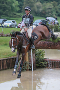 JETSET IV ridden by Andrew Nicholson (New Zealand) placed third after the cross country at Bramham International Horse Trials 2016 at  at Bramham Park, Bramham, United Kingdom on 11 June 2016. Photo by Mark P Doherty.