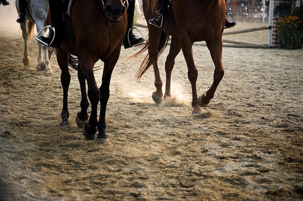 Participants in a 4-H Fair bring their horses around in preparation for the next event.