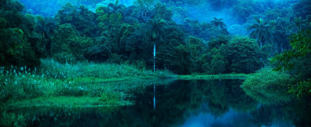 Anochecer en el bosque lluvioso tropical del Parque Nacional Camino de Cruces, Panamá | En el anochecer.<br /> <br /> Nightfall at rainforest in Camino de Cruces National Park, Panama | Into the dusk.<br /> <br /> Panorámica de 2 fotografías | Panoramic image of 2 photographs.<br /> <br /> Edición de 25 | Fine Art Panama.