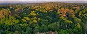 Large panorama of the Amazon rainforest. Area of Cristalino, southern Amazon, Brazil.