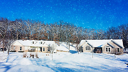 Blue skies and white flakes set this winter scene
