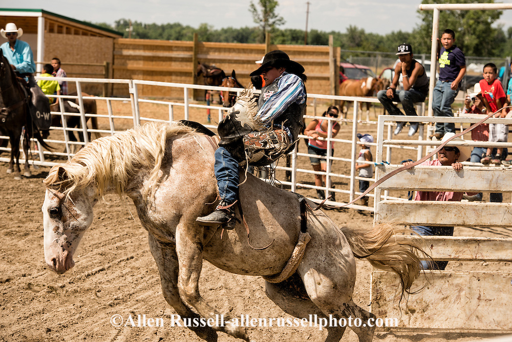 Bareback Rider, Crow Fair Rodeo, Crow Indian Reservation, Montana, Native Americans