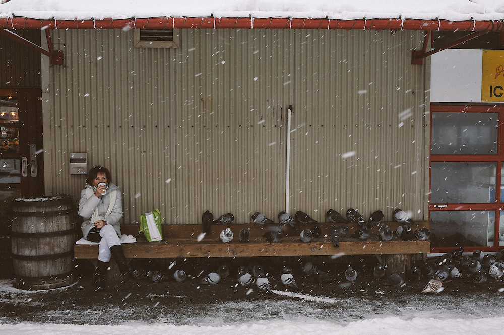 Winter weather is for the birds, unless you ask the pigeons on Granville Island during Sunday's snowfall. December 21, 2008. (Scott Robert Collins)