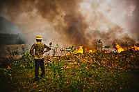 A worker watches as a field burns to make a clearing to plant new crops in Yen Bai Province in northern Vietnam.