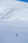 Skier, cross country skiing across snowy landscape, white